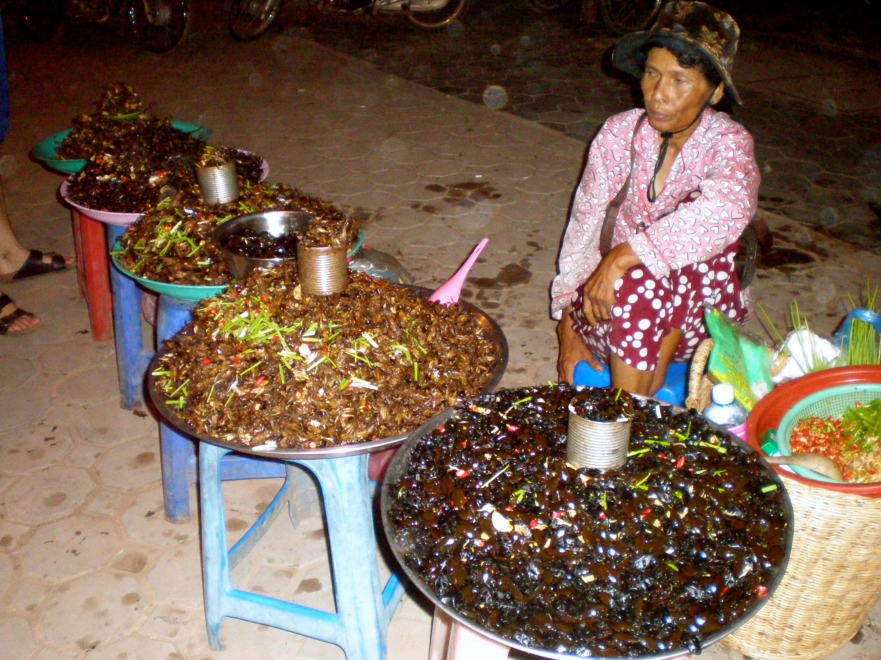 Bug lady Siem Reap